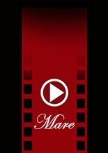 video_il_mare.fw